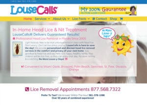 The Affordable Web Guy Small Business Portfolio Example Louse Calls in Orlando