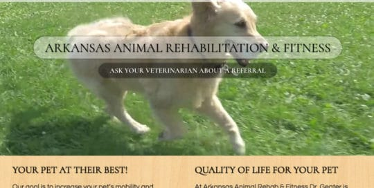 The Affordable Web Guy Small Business Portfolio Example Arkansas Animal Rehab Hospital