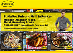 Complete Design and Hosting For Small Businesses like Funugyz Bar and Grill in Parker
